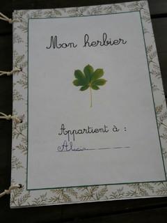 herbier Alicia (1).jpg