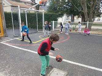 basket (2).jpg