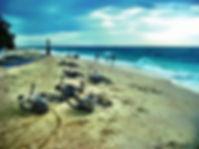 Pakej Honeymoon Boracay, Bulan Madu Boracay