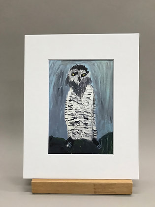 JB Bearded Owl print