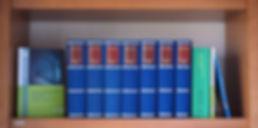 """Braunes Bücherregal aus Nina Waldkirchs privater Paschen-Bibliothek mit Publikationen von Nina Waldkirch. Grünes Buch mit Cover: """"Der Trend zum Mystery-Genre in neuen Romanen und Filmadaptionen - Dan Brown, Arturo Pérez-Reverte und Wolfgang Hohlbein""""; blaue Bücher: Bibliothek Deutschsprachiger Gedichte Ausgewählte Werke XII, XIII, XIV, XVII, XIX, XX, XXI; grünes Buch: """"3. Bubenreuther Literaturwettbewerb 2017""""; blaues Buch: """"Schmetterlinge im Kopf - Mannheimer Jugendliche schreiben""""."""