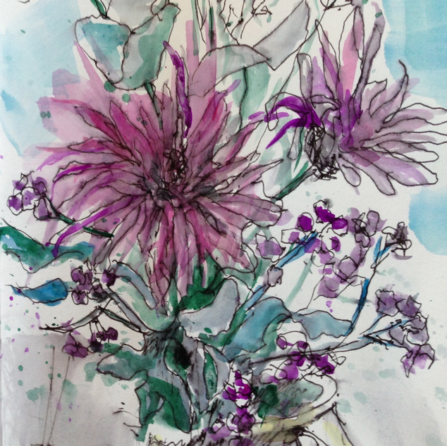 Pic 10  Asters
