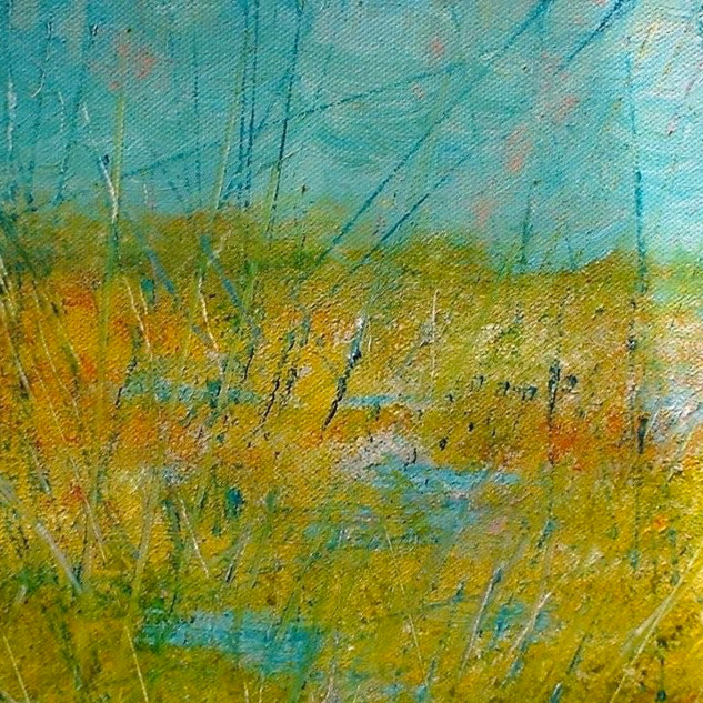 Pic 15 Reedbeds