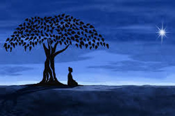 25-30 Minute Manifestation Meditation