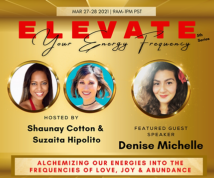 4. Denise Michelle - ELEVATE Email Flyer