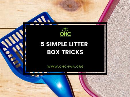 5 SIMPLE LITTER BOX TIPS