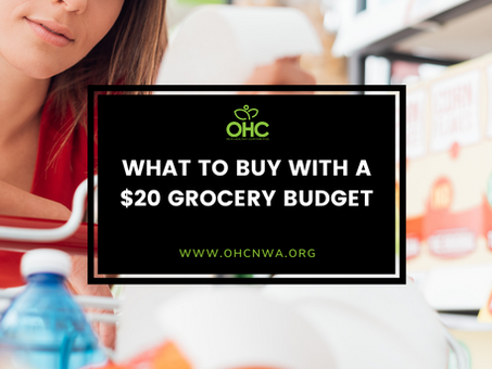 WHAT TO BUY WITH A $20 GROCERY BUDGET