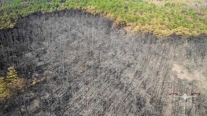 Incendio Val Susa - Luca 015 A - con log