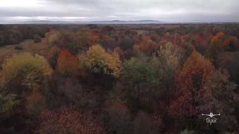 Un volo nel tempo tra autunno ed inverno