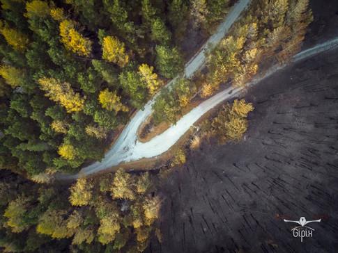 Incendio Val Susa - Luca 138 A - con log