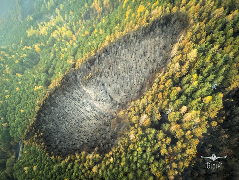 Incendio Val Susa - Luca 087 A - con log