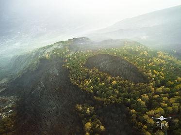 La macchia bruciata nei boschi