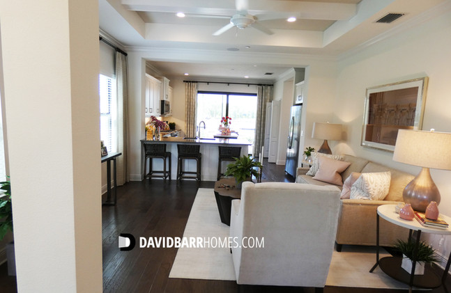 Vicenza Liberty model home great room