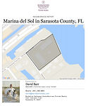 Marina del Sol demographic report