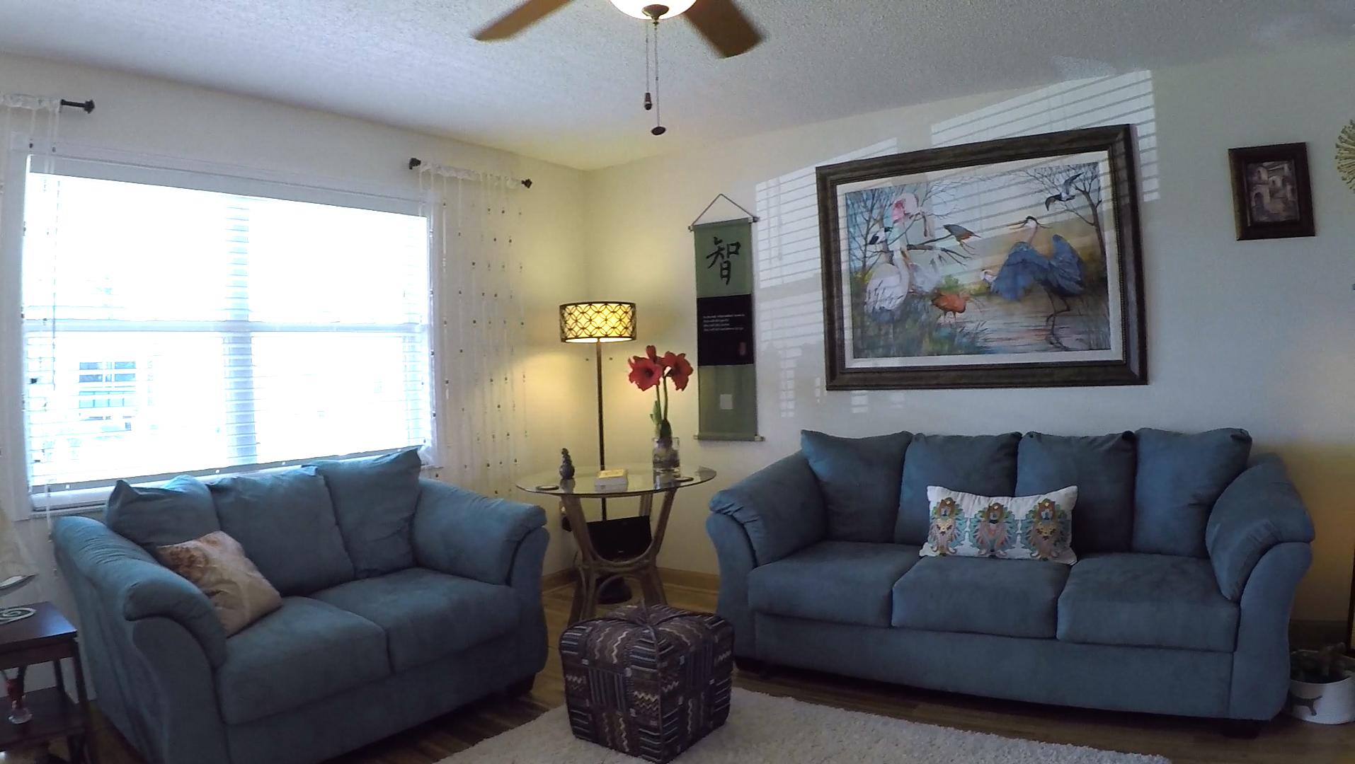 1207 Falcon Road living room 3