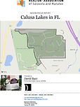 Get a free Calusa Lakes demographic and real estate report