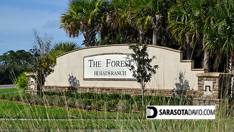 Forest at Hi Hat Ranch Sarasota homes for sale