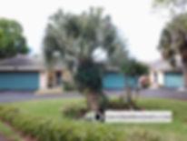 Leslie Park Villa Le Grand detached villas in Venice FL