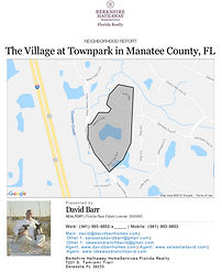 The Village at Townpark Lakewood Ranch demographic report