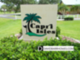 Capri Isles Venice FL real estate for sale