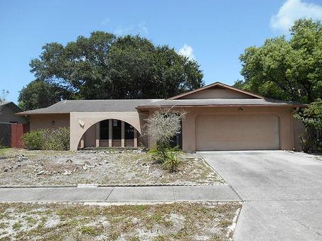 Lake Sarasota Homes for Sale