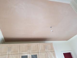 Flat in Edinburgh, plaster work and repaires