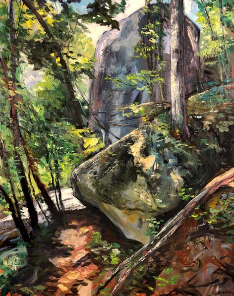 Green River Gorge, A Passage Through
