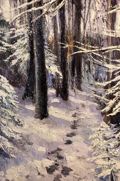 Passage Through the Woods