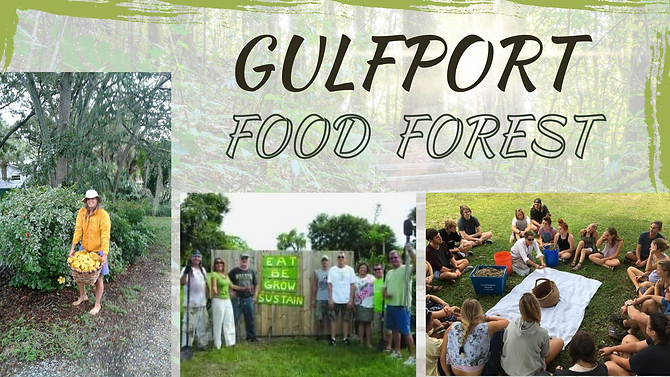 Gulfport Food Forest .png