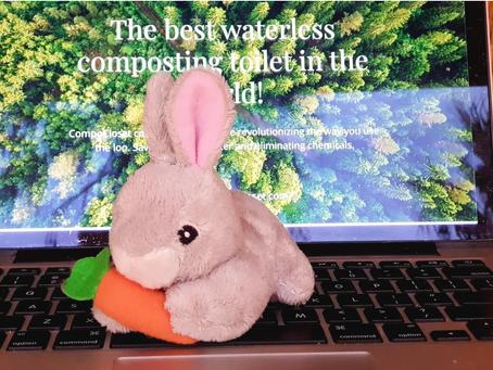 Busy Bunny 🐇