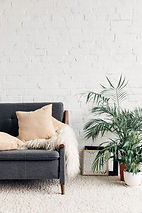 comfy couch with flowerpots in white liv