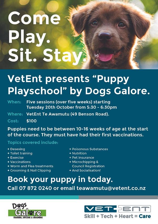 Puppy Pre School oct.jpg
