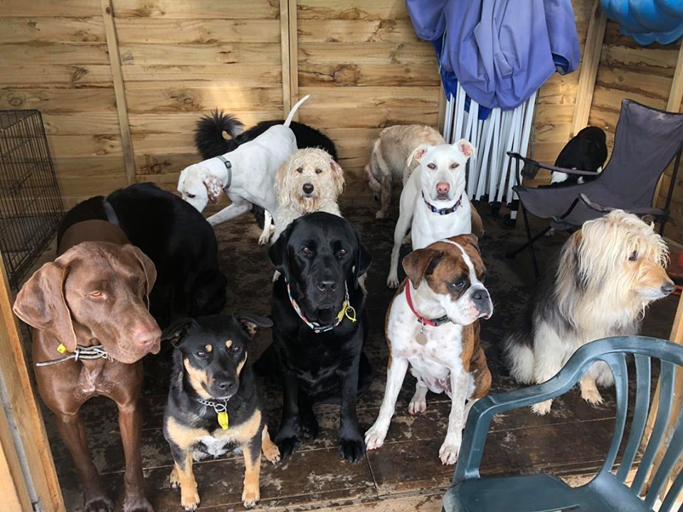 Practising our group sits in the shed while waiting out the rain!
