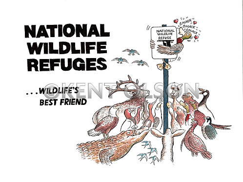 National Wildlife Refuges Cover, 12x18 Glossy Print, hand signed