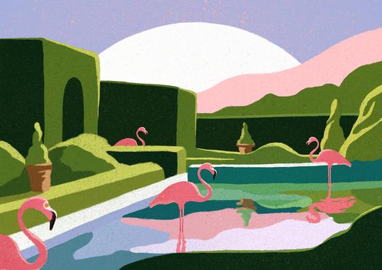 Flamingos low.png