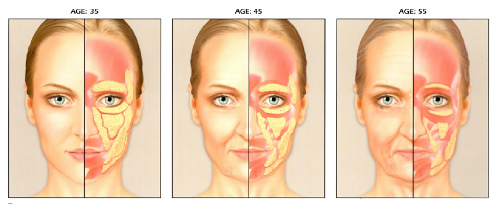 Normal ageing process of people