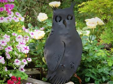 owl. metal, 2020 jpg