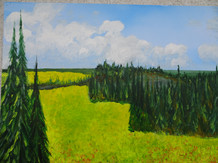 Katrin's Canola Fields