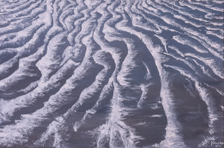 The tracks of waves...
