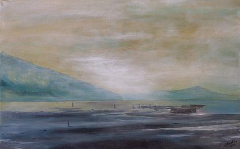 Mystic Cowichan Estuary