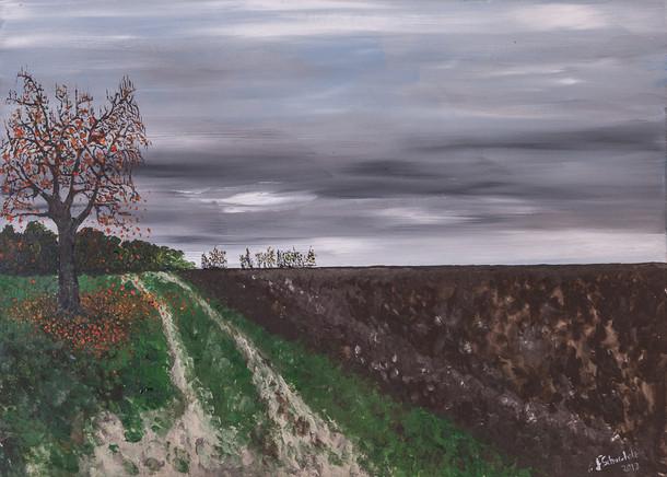Plowed fields, Odenwald Germany