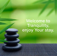 Welcome to Tranquility.JPG