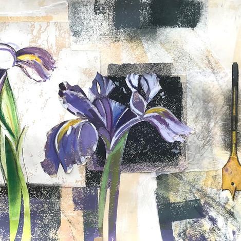 Iris, Drill.jpg