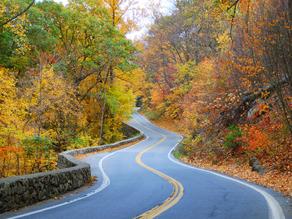 Just Road: Light Navigating My Path
