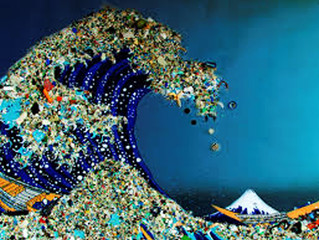 What Is Your Company Plastic Footprint?