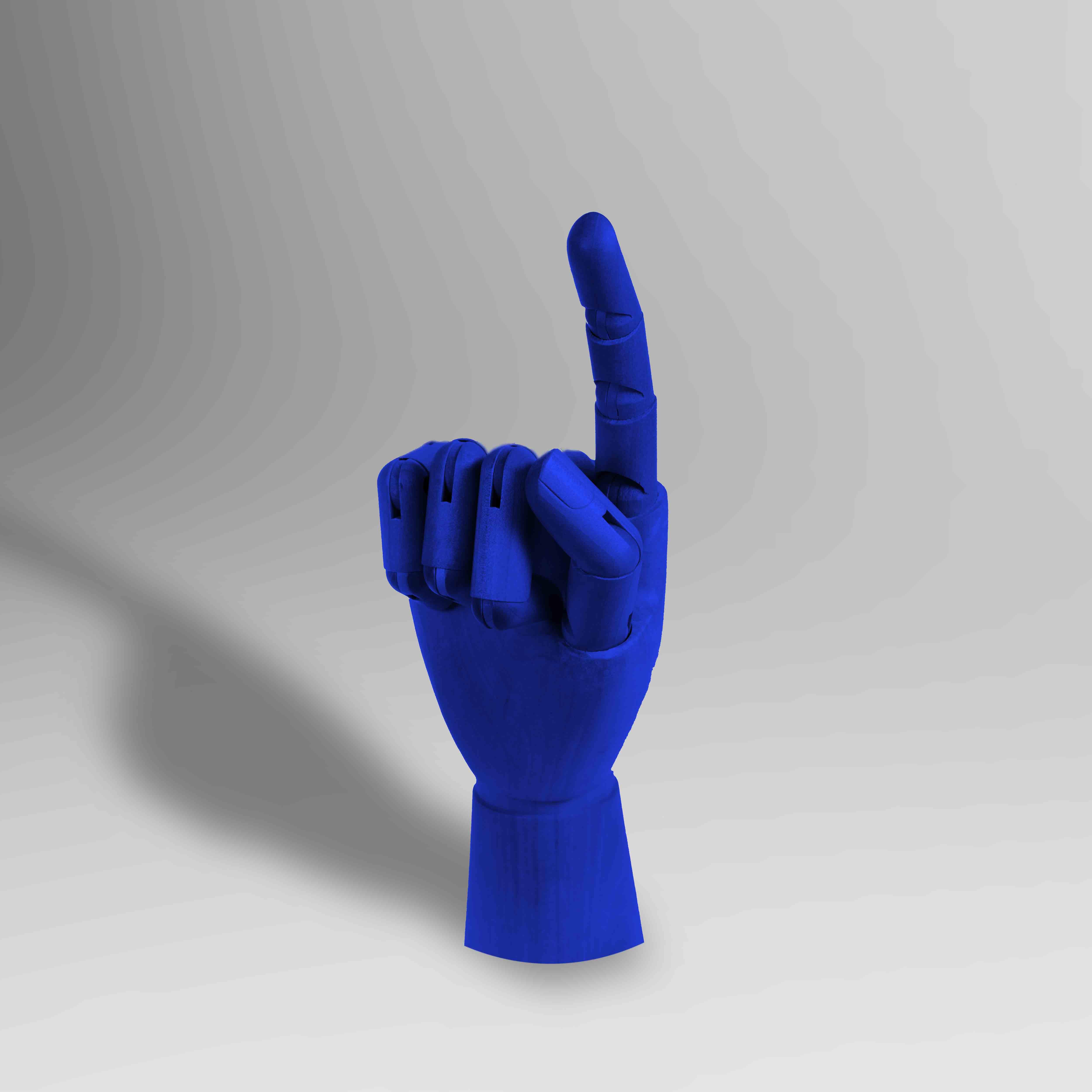 020 BLUE ARTICULATED HAND v02