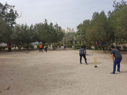 cricket 2018 3