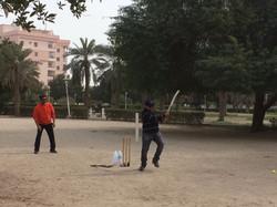 cricket 2018 2