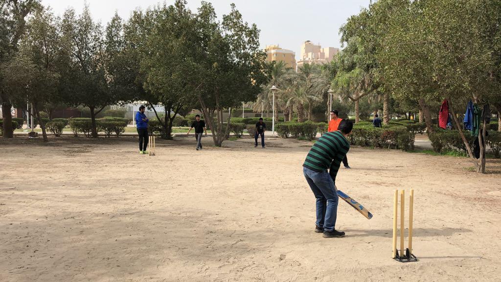 cricket 2018 1