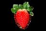 Strawberry_BNC_edited.png